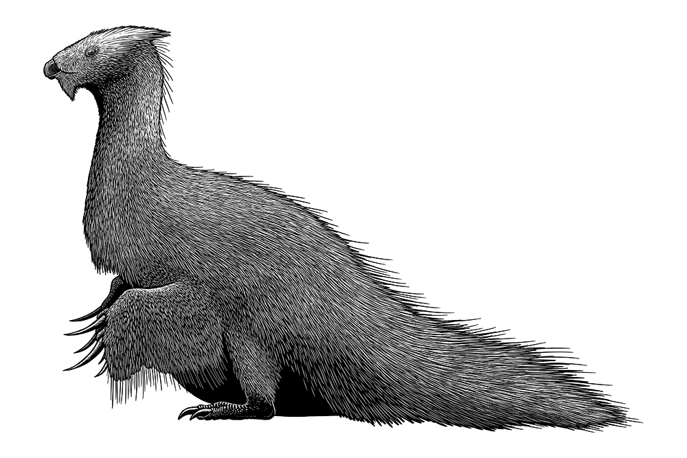 A black-and-white ink illustration of an extinct feathered dinosaur. It has a small head with a blunt beak, a long neck, a fat body, wing-like arms with long rake-like claws, stubby legs, and a thick tail.