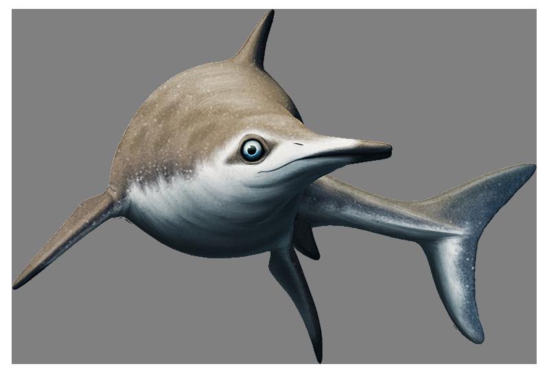 Ichthyosaur Blubber