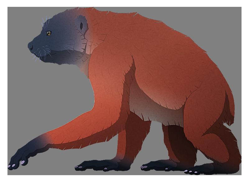 A stylized illustration of an extinct gorilla-like lemur. It has a short snout, long arms, and short legs.
