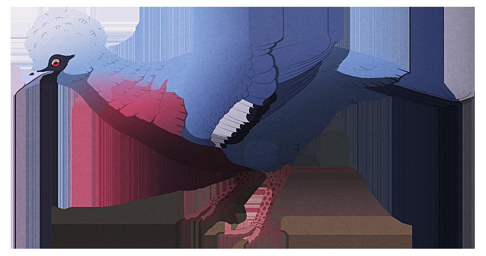 Island Weirdness #37 — Natunaornis gigoura