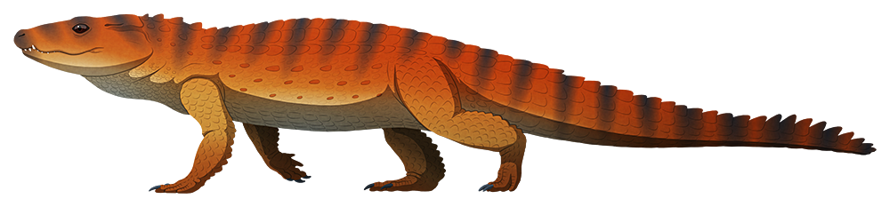 A stylized illustration of an extinct terrestrial crocodile. It has a short snout and an upright posture.