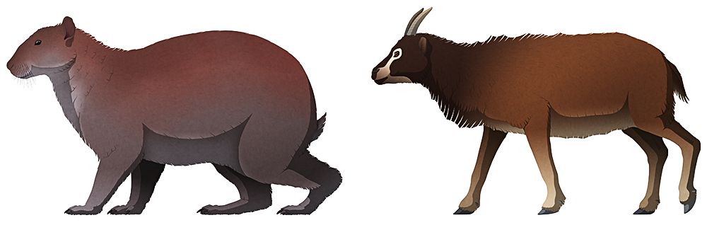 A stylized illustration of two extinct mammals. The first is a giant rabbit, with a small head, tiny eyes and ears, a large body and thick heavy limbs. The second is a small goat-like sheep, with a short snout, forward-facing eyes, and short pointed horns. They're both about the same size.