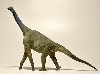 A photograph of an Atlasaurus model. Its been reconstructed very skinny, which only serve to emphasize its weird proportions.