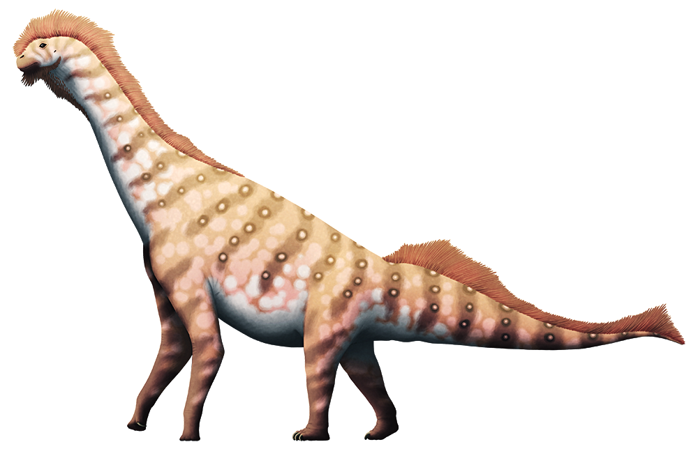 An illustration of an extinct sauropod dinosaur. It has an unsually short neck and very long slender legs.