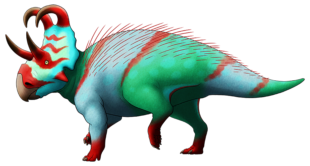 A colored line drawing of an extinct ceratopsian dinosaur. It has two long brow horns, and a bony neck frill topped by a pair of long spikes that curve forwards and downwards above its face.