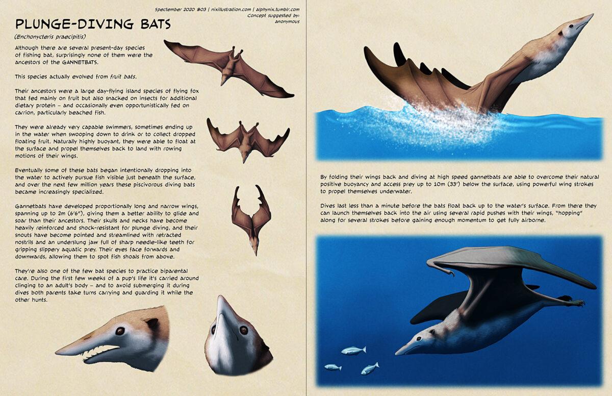 Spectember #03: Plunge-Diving Bats