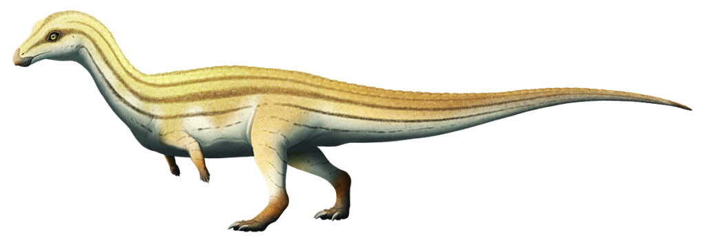 An illustration of an extinct pseudosuchian, a relative of modern crocodiles. It resembles a dinosaur much more than a croc, standing bipedally, with a long neck, tiny arms, and a long counter-balancing tail.