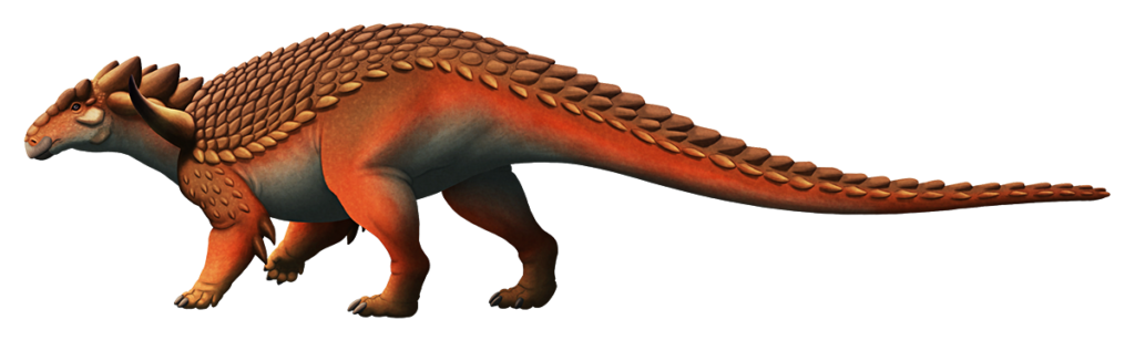An illustration of an extinct nodosaur, a type of quadrupedal herbivorous dinosaur. Its body is covered in densely-packed knobbly spiky armor.